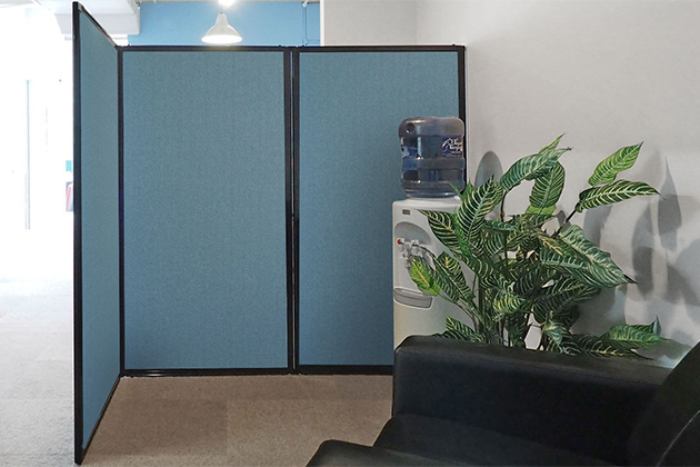 Privacy Vs. Other Room Divider Solutions